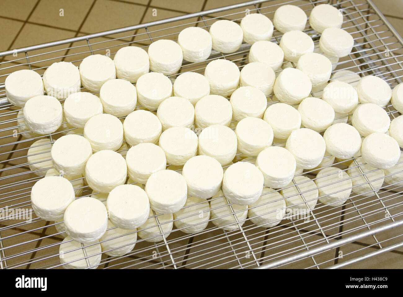 Cheese dairy, maturity chamber, gratings, Käselaiber, - Stock Image