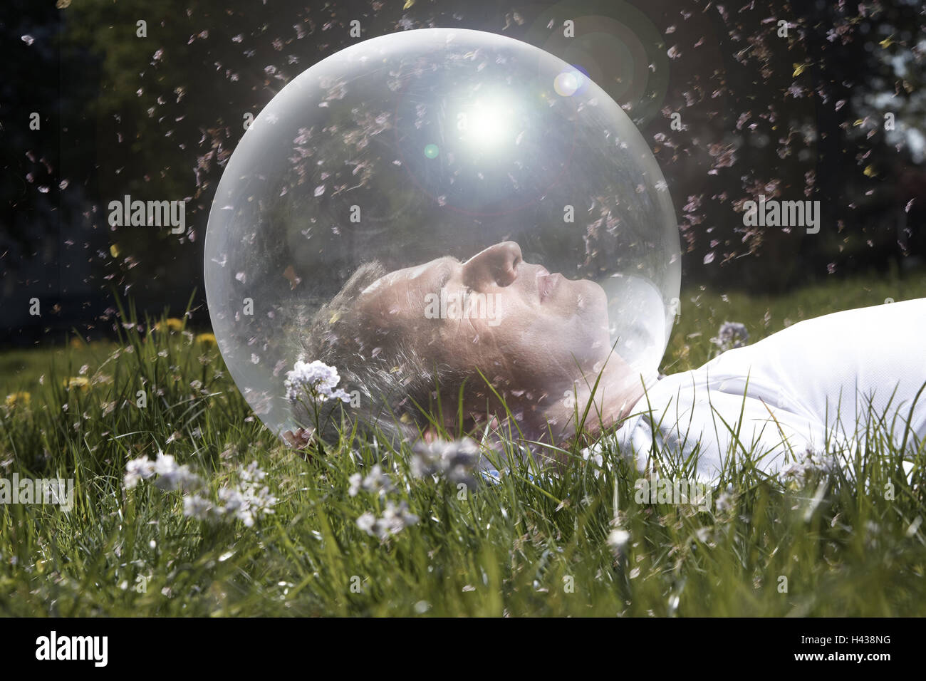 Garden, man, head, glass ball, meadow, lie, blossom pollings, icon, allergy, protection, isolation, model released, - Stock Image