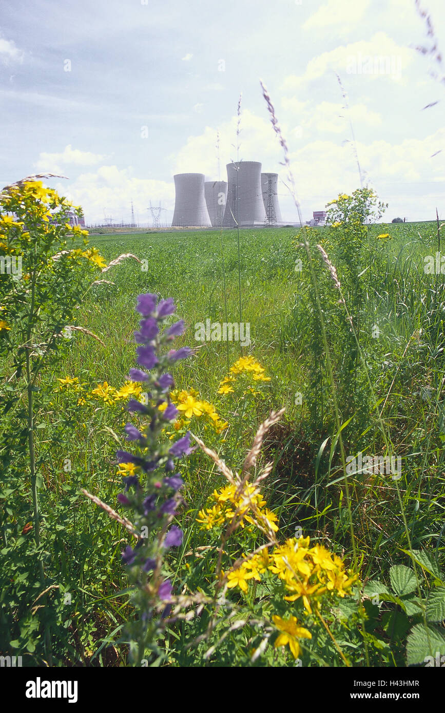 Czechia, Tyn nad Vltavou, nuclear power plant Temelin, cooling towers, flowers, meadow, atomic power station, nuclear - Stock Image