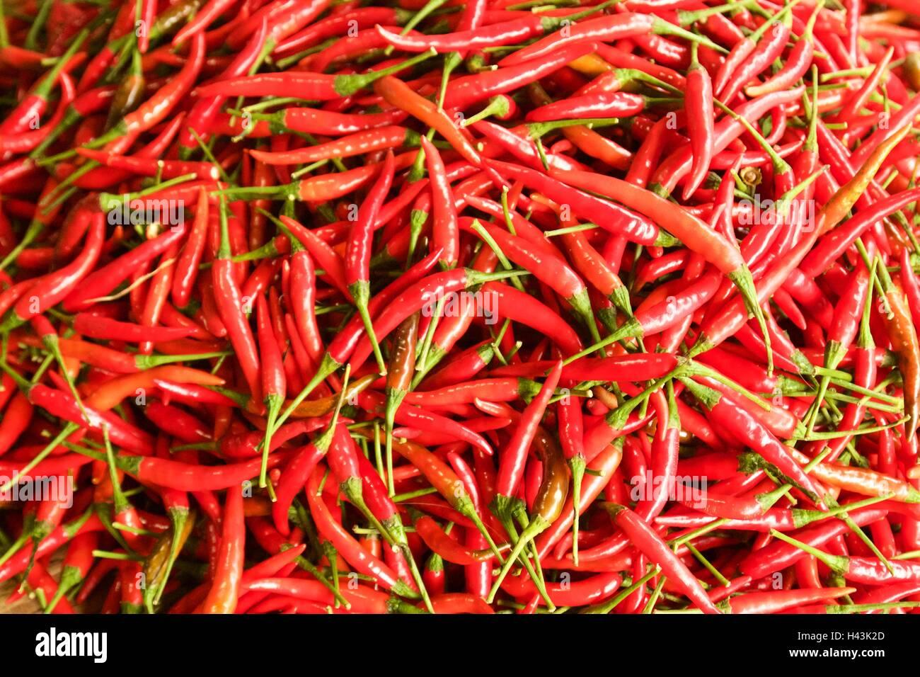 Chilli Padi, Bird's Eye Chilli, Bird Chilli, Thai pepper - Stock Image