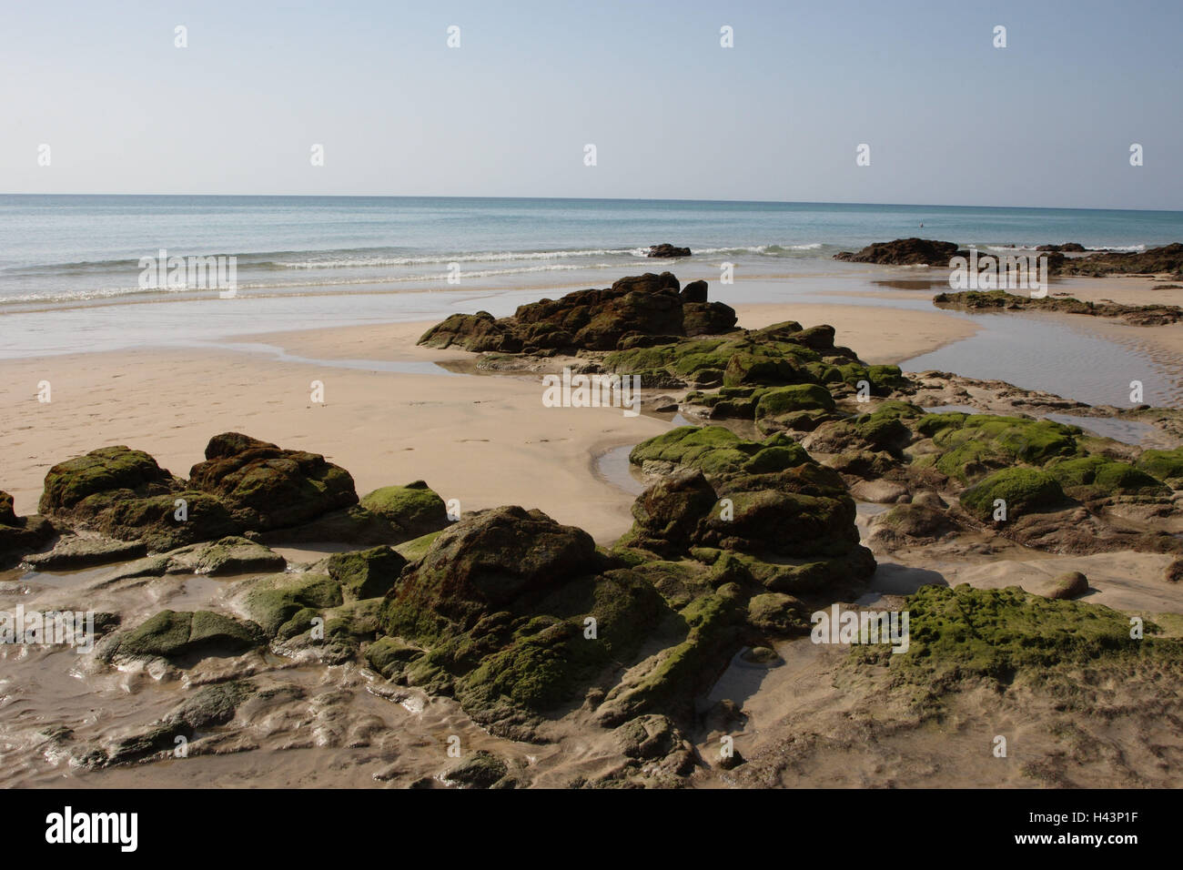 Bile coast, beach, on Fuerteventura to Costa Calma, - Stock Image