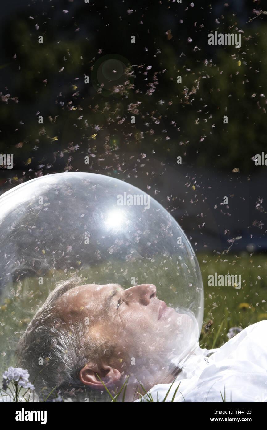 Garden, man, head, glass ball, meadow, - Stock Image