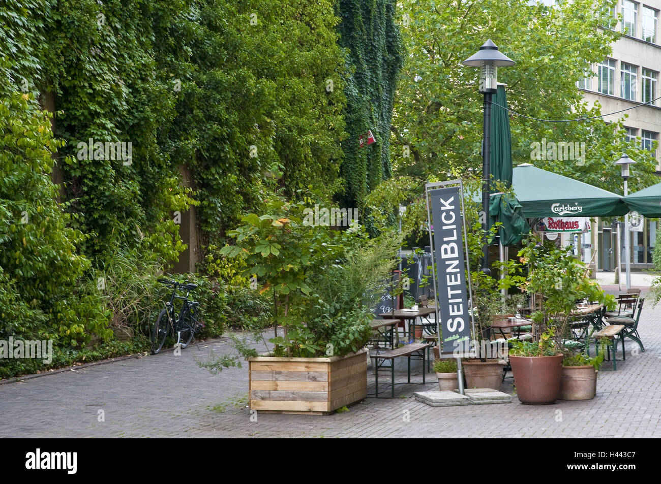 Street cafe 'side glance', lane Trentel, food, North Rhine-Westphalia, Germany, - Stock Image