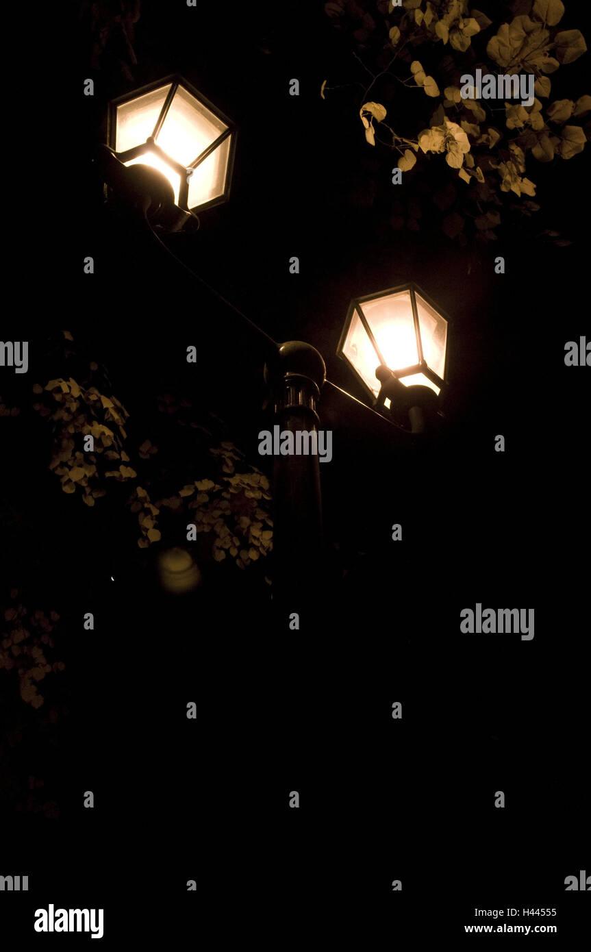 Street lamp, shine, tree, twigs, night, darkness, darkness, broad-leaved tree, lanterns, lights, lighting, electricity, - Stock Image