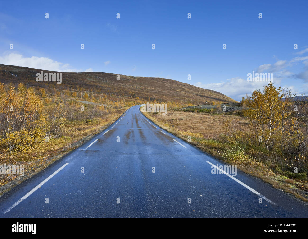 Norway, Valdresflya, mountain landscape, street, - Stock Image
