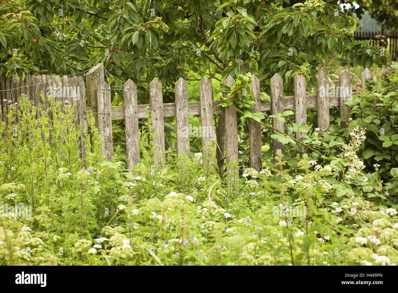 Fence, garden, ragged, - Stock Image