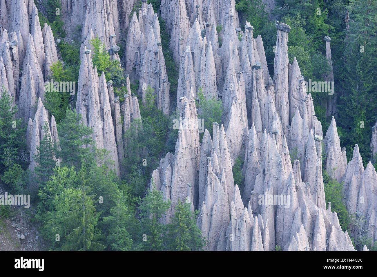 Italy, South Tyrol, to rides, earth pyramids, - Stock Image