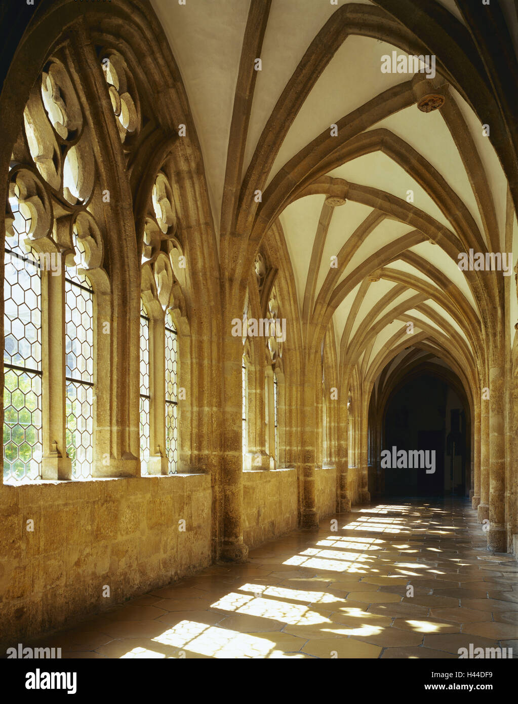 Germany, Bavaria, Eichstatt, cathedral, cloister, Late-Gothic, light game, town, university town, church, inside, - Stock Image