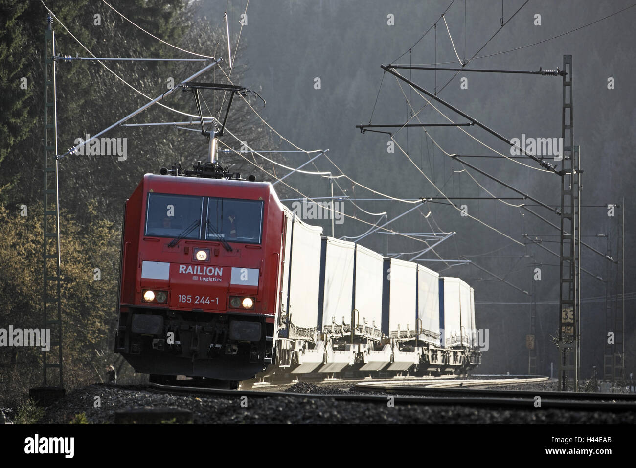 Goods train, franc wood trajectory, intermodal wagon, electric locomotive 'Bavarian Broadcasting 185', scenery, - Stock Image