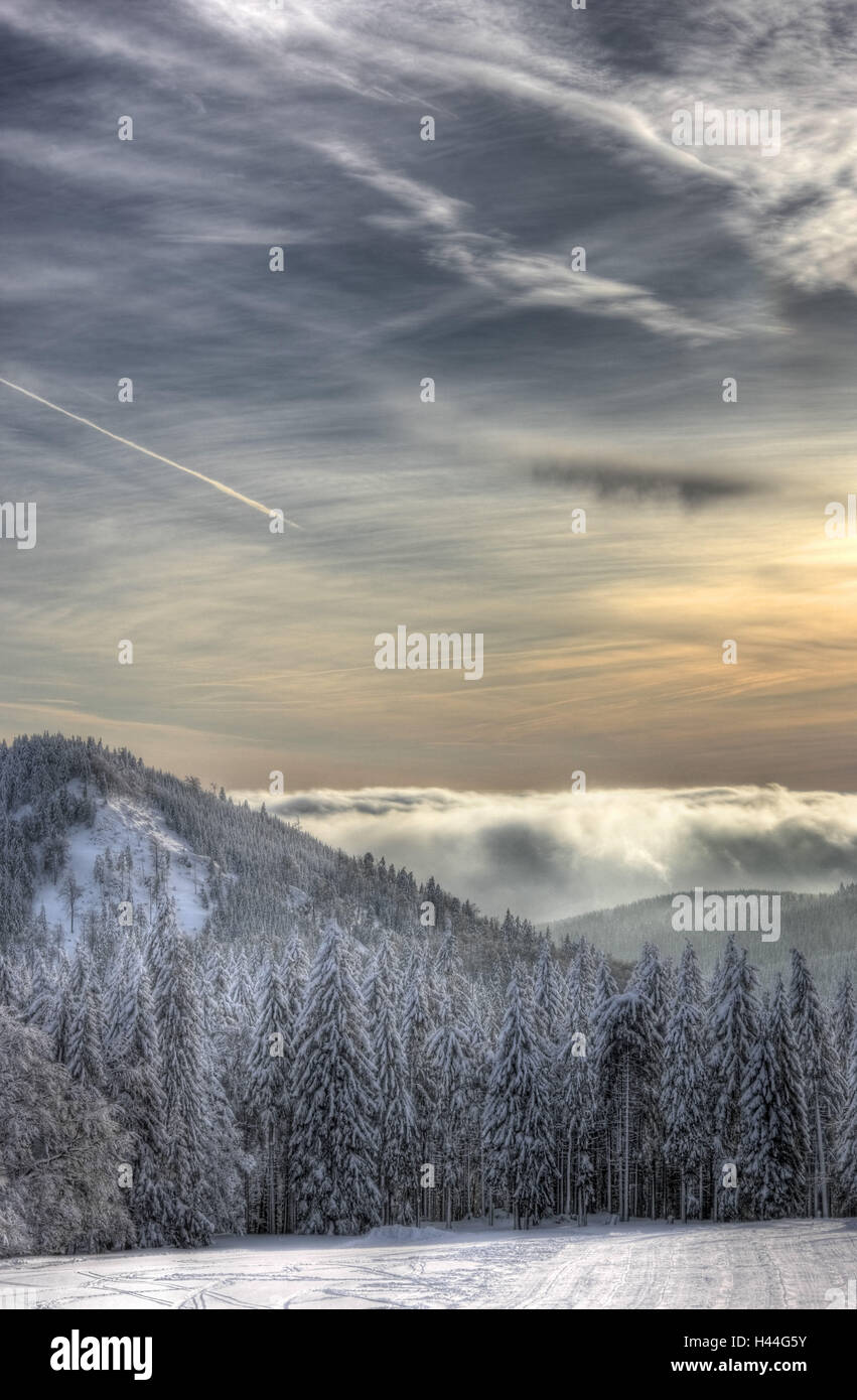 Mountains, wood, cloud cover, snow, - Stock Image