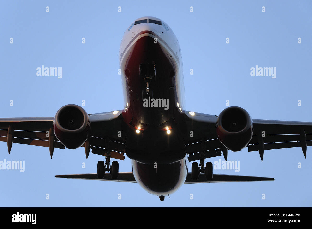 Airplane, heaven, cloudless, - Stock Image