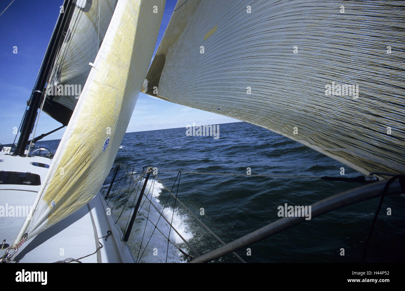 Sail yacht, sail, wind, sailing ship, yacht, sailboats, boat, sailings, water sport, sport, sailing trip, regatta, - Stock Image