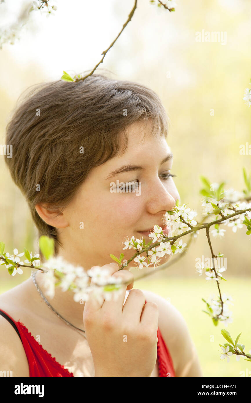 Teenagers, girls, branch, blossoms, smell, portrait, side view, model released, outside, teenager's girls, young - Stock Image