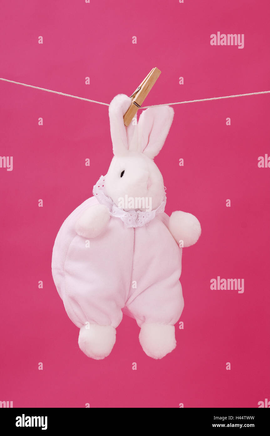 Substance hare, clothesline, hang, pink background, - Stock Image
