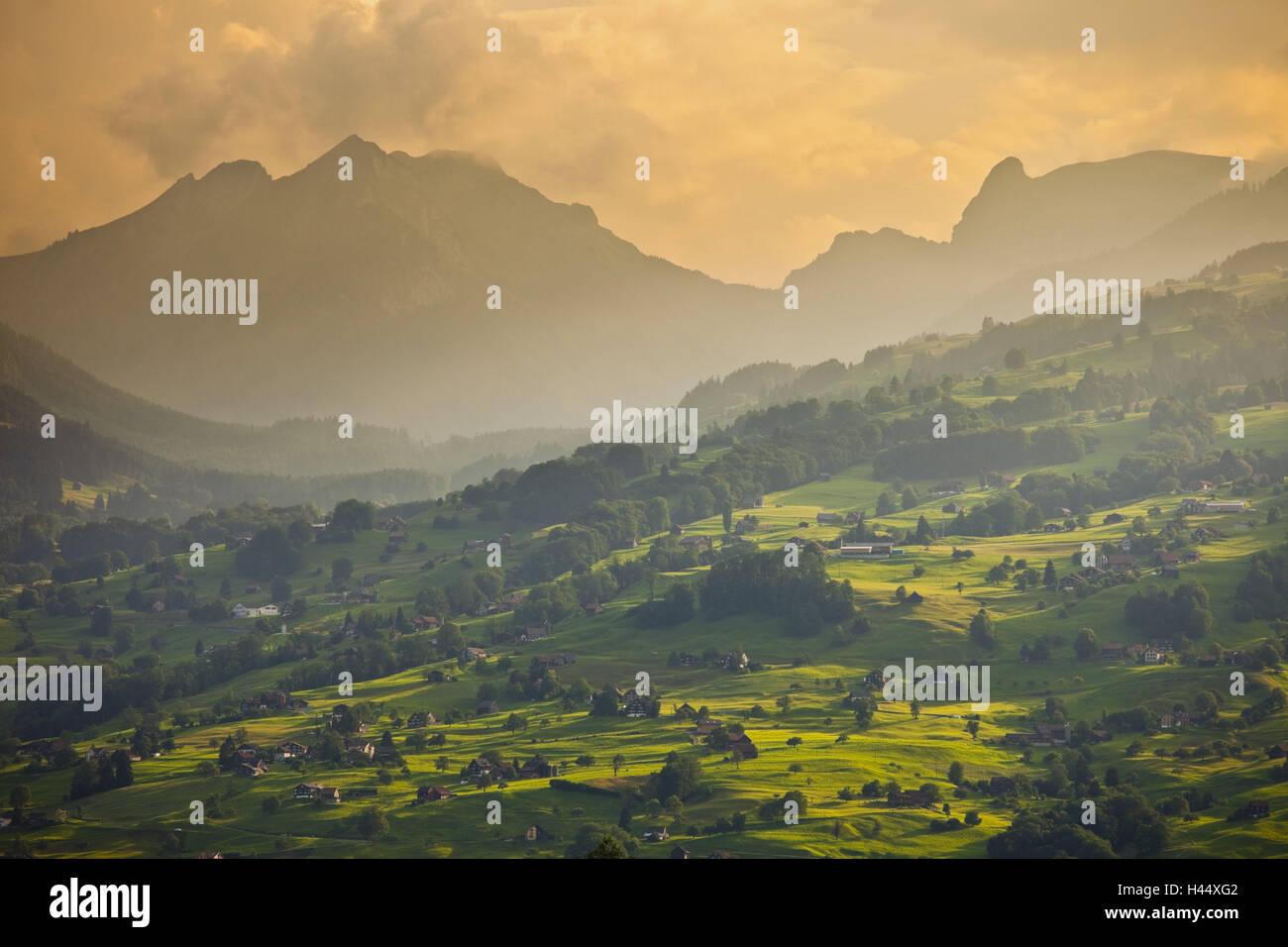 Switzerland, St. Gallen, Ober Toggenburg, alpine grassland, evening light, Stock Photo