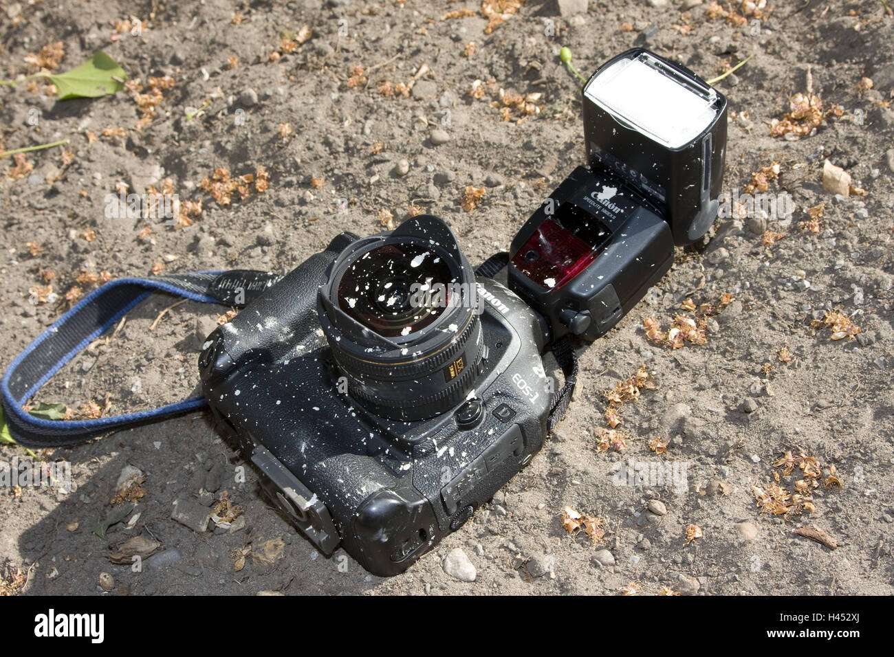 Reflex camera, Aufsteckblitz, Sand, lie, dirtily, camera, camera, professional camera, lens, fish-eye lens, Aufsteckblitz, - Stock Image