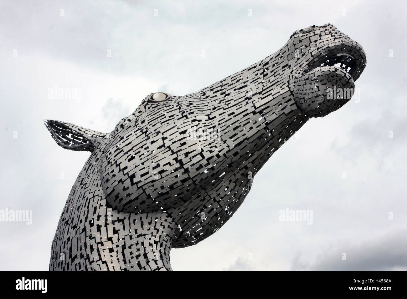 The head of one of the Kelpie sculptures in Falkirk. It is the work of Andy Scott. - Stock Image