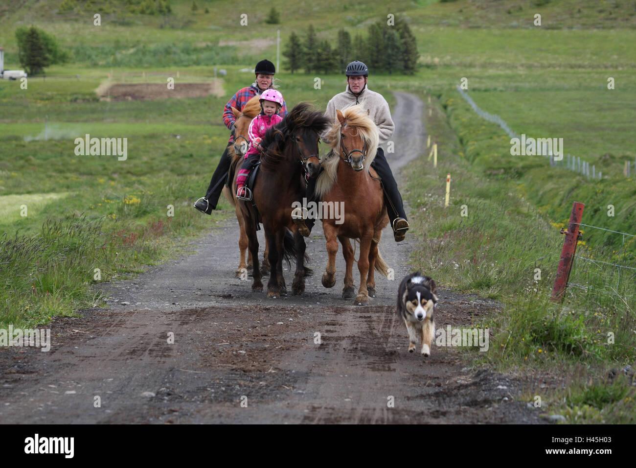 Iceland, family, ride, - Stock Image