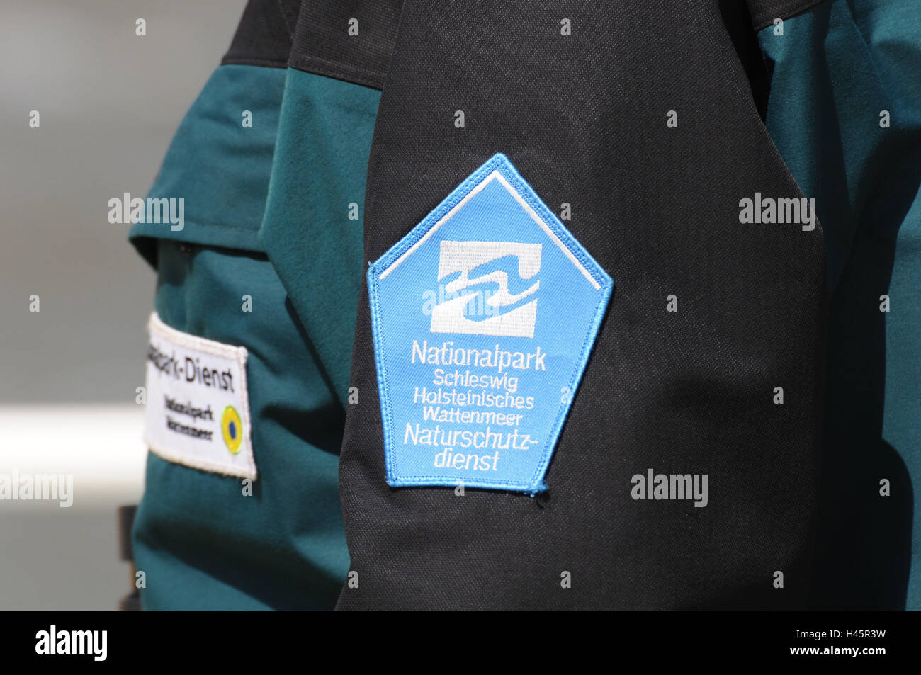 Germany, Schleswig - Holstein, north frieze country, mud flats, watt guide, jacket, detail, badge, - Stock Image