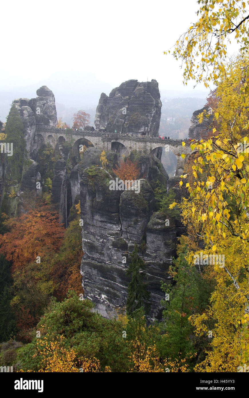 Germany, Saxony, Elbsandsteingebirge, bastion, bastion bridge, - Stock Image