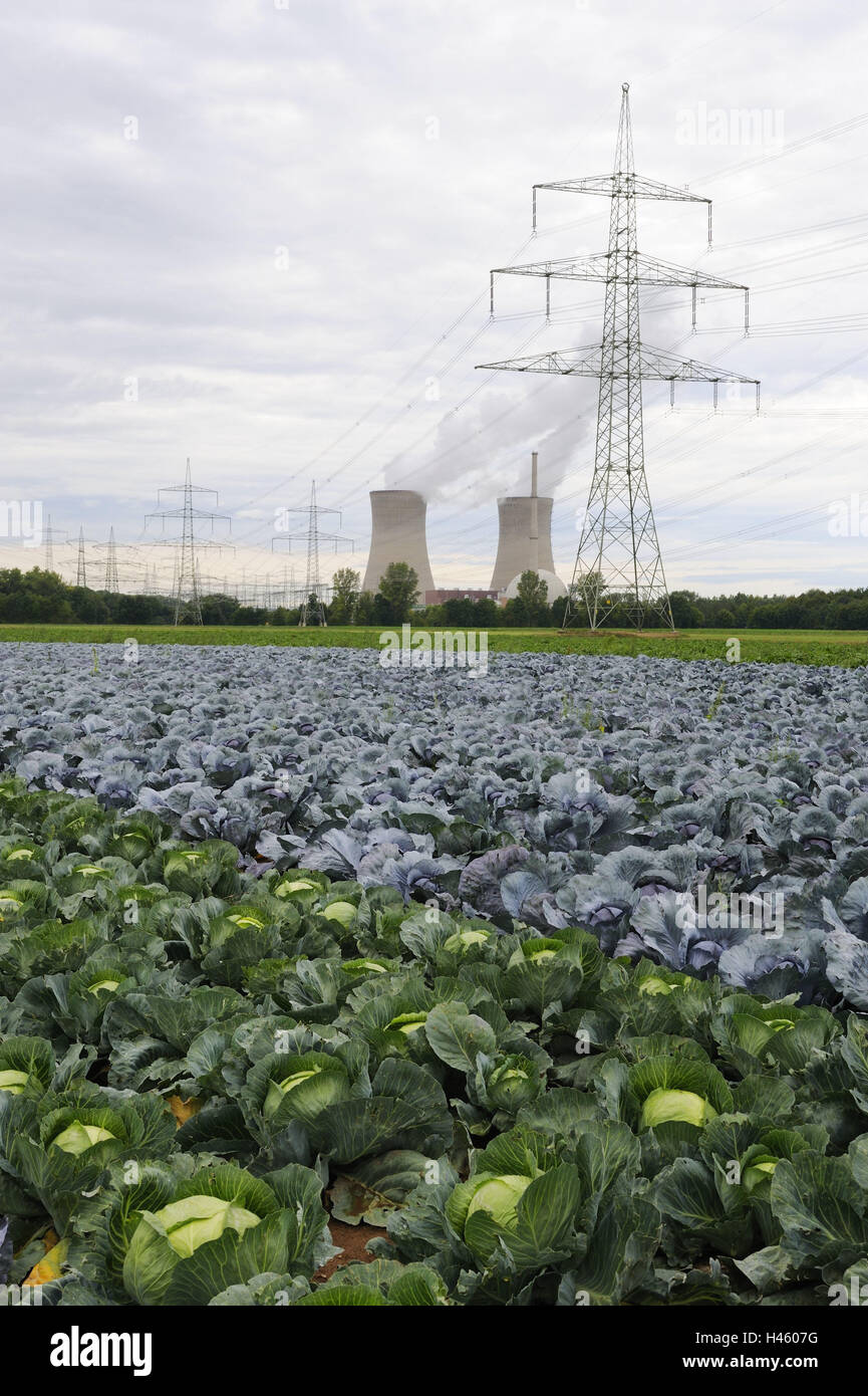 Germany, Bavaria, nuclear power plant Grafenrheinfeld (town), cooling towers, smoke, cabbage field, Lower Franconia, - Stock Image