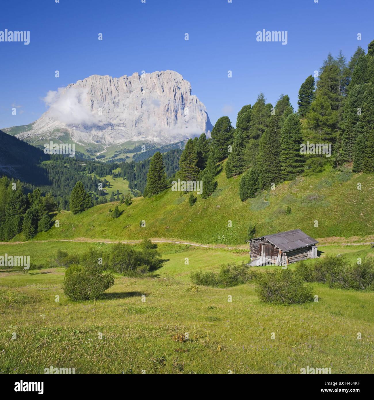 Italy, South Tyrol, the Dolomites, Sella Pass, Langkofel, - Stock Image