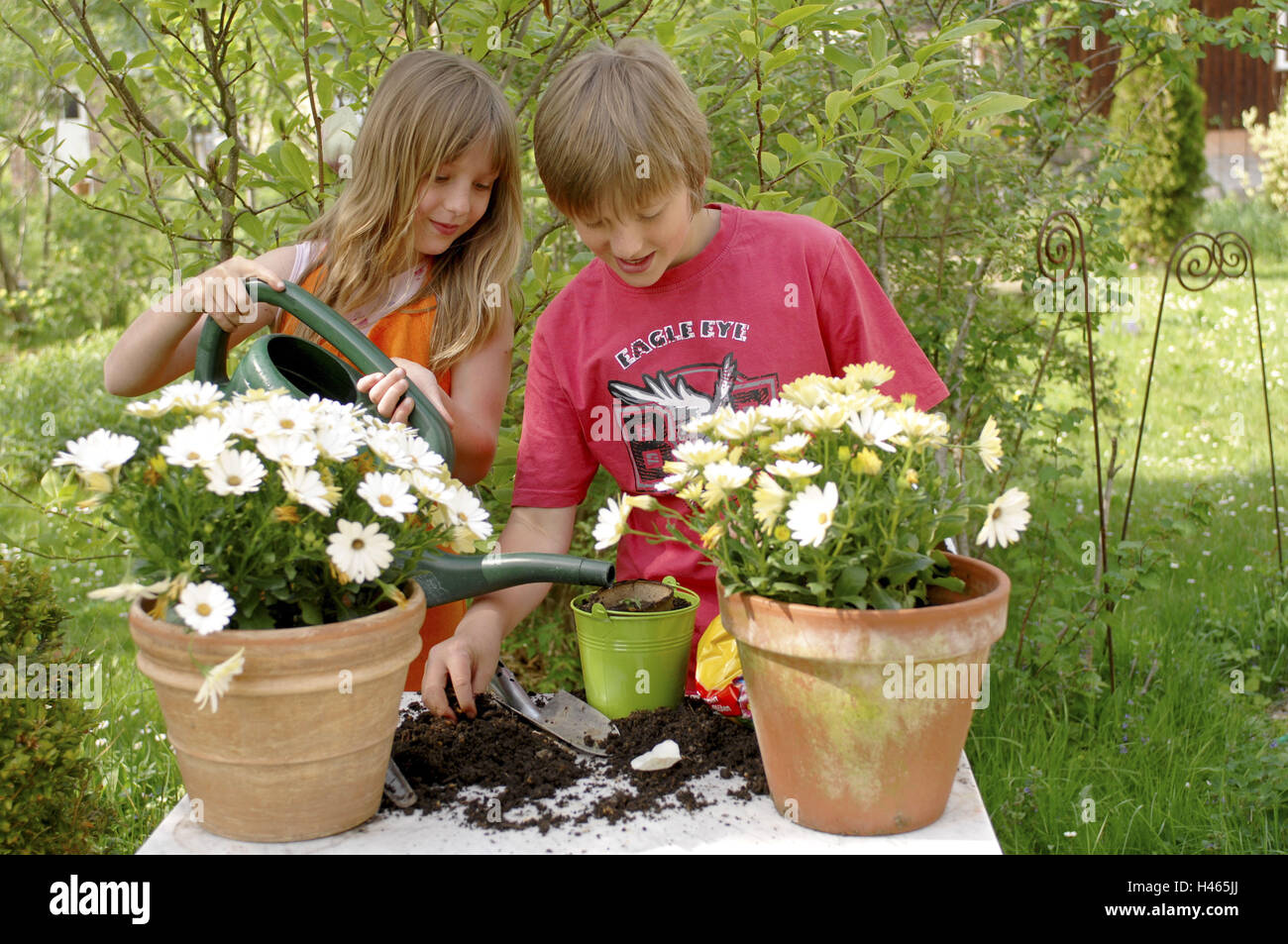 Girls, Boy, Garden, Flowers, Implant, Ground, Pflanzgefäße, Watering Can,  Person, Children, Siblings, Two, Leisure Time, Hobby, Career Plans, Flower  Care, ...