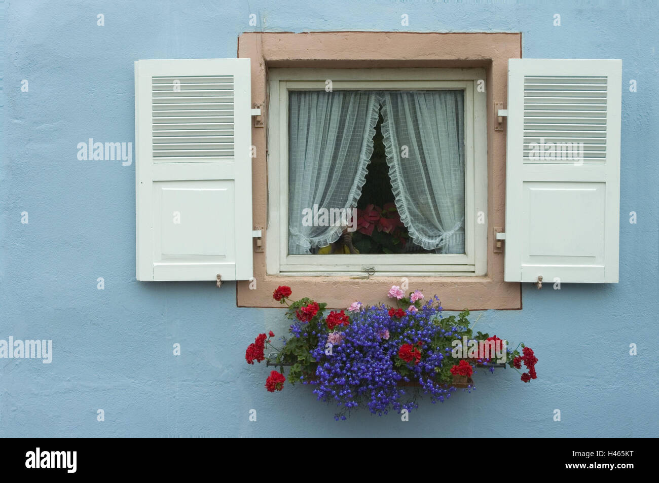 House, window, floral decoration, detail, residential house, facade, light blue, shutters, white, openly, curtains, - Stock Image