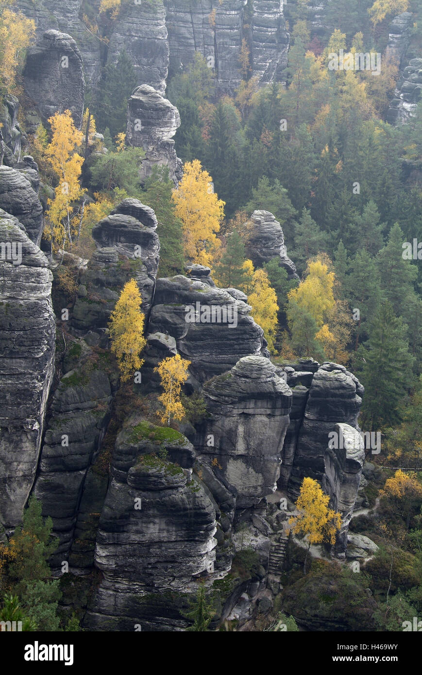 Germany, Saxony, Elbsandsteingebirge, bastion, - Stock Image