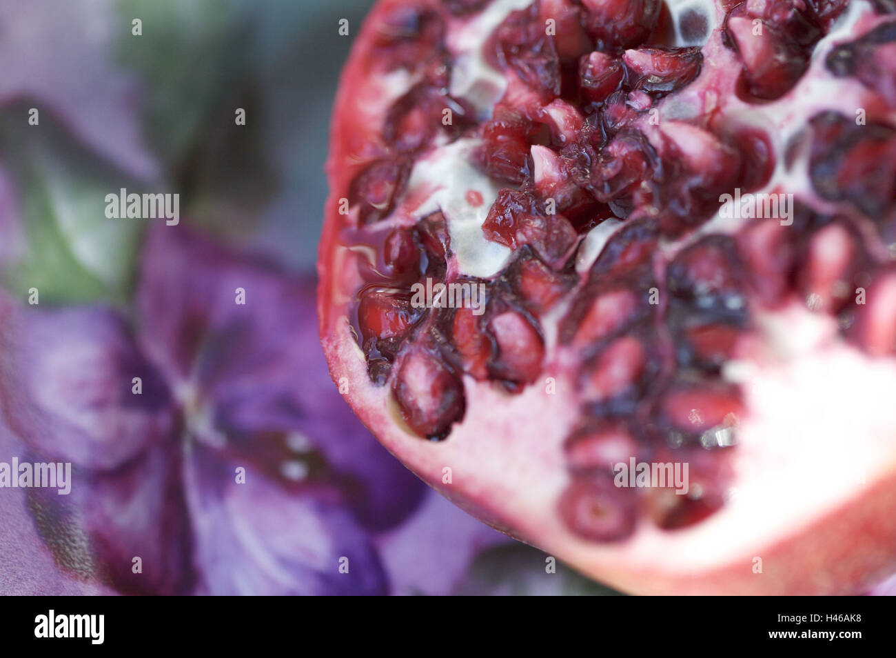 Pomegranate, cores, close up, - Stock Image