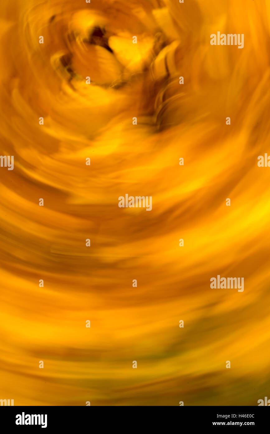 blurred motion fall colors background Stock Photo 123073900 Alamy