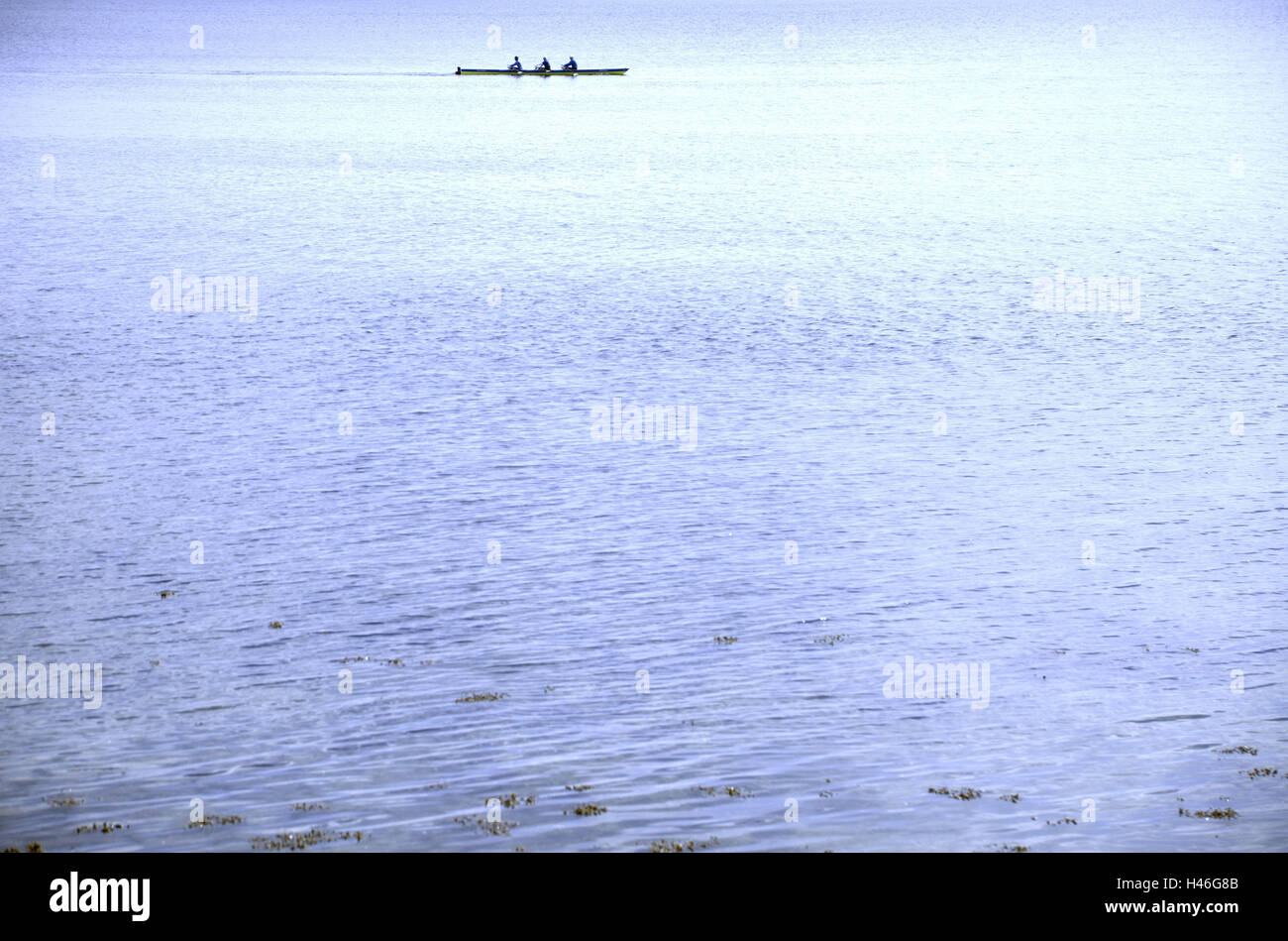 The Baltic Sea, rowing boat, outdoors, watersports, water, sea, rowing, boat, firth, Germany, Europe, Schleswig - Stock Image