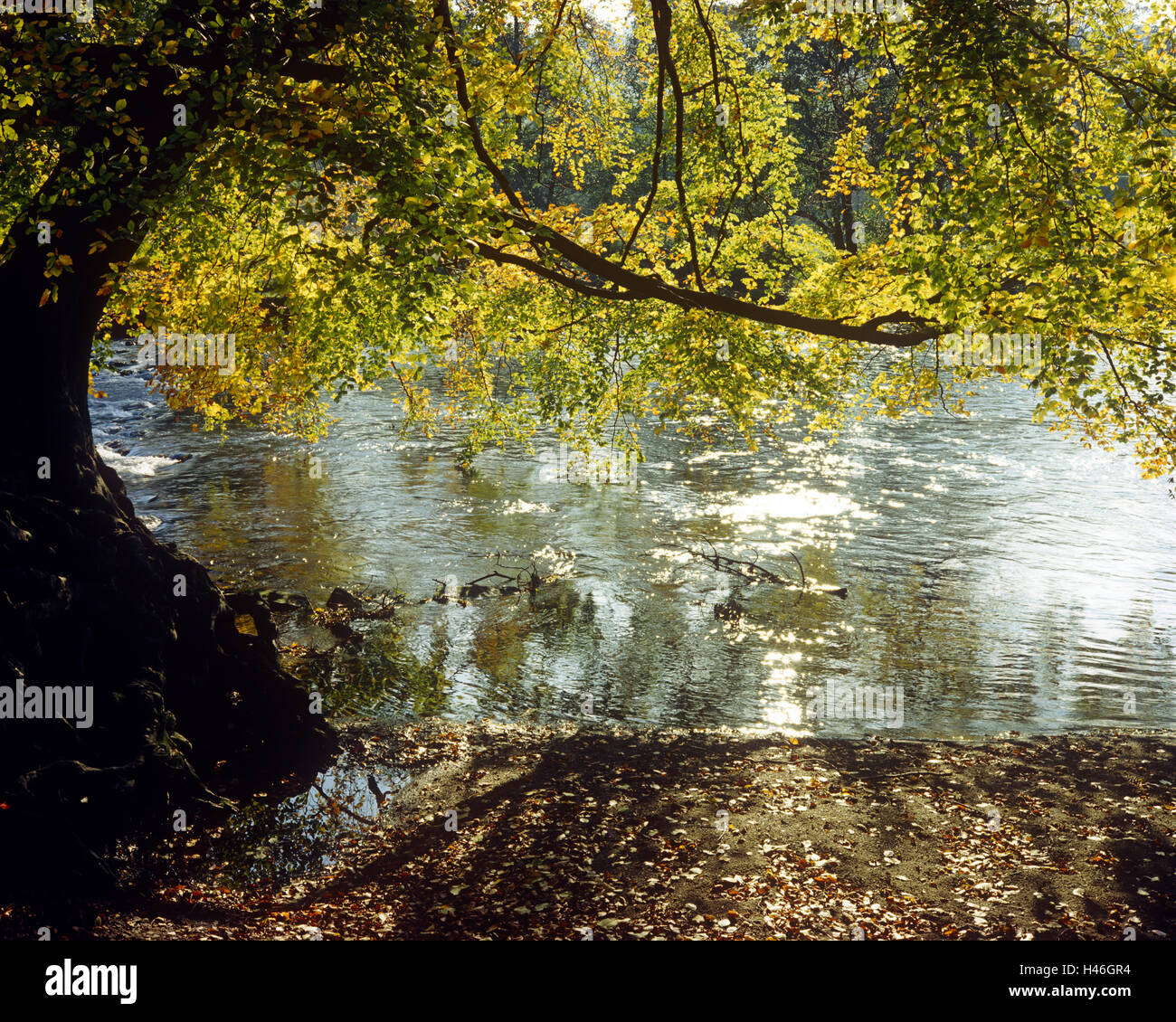River Derwent near Hathersage - Stock Image