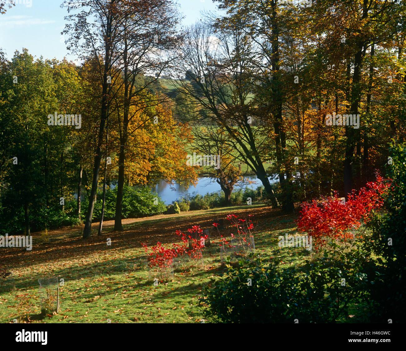 Winkworth Arboretum Godalming, Surrey - Stock Image