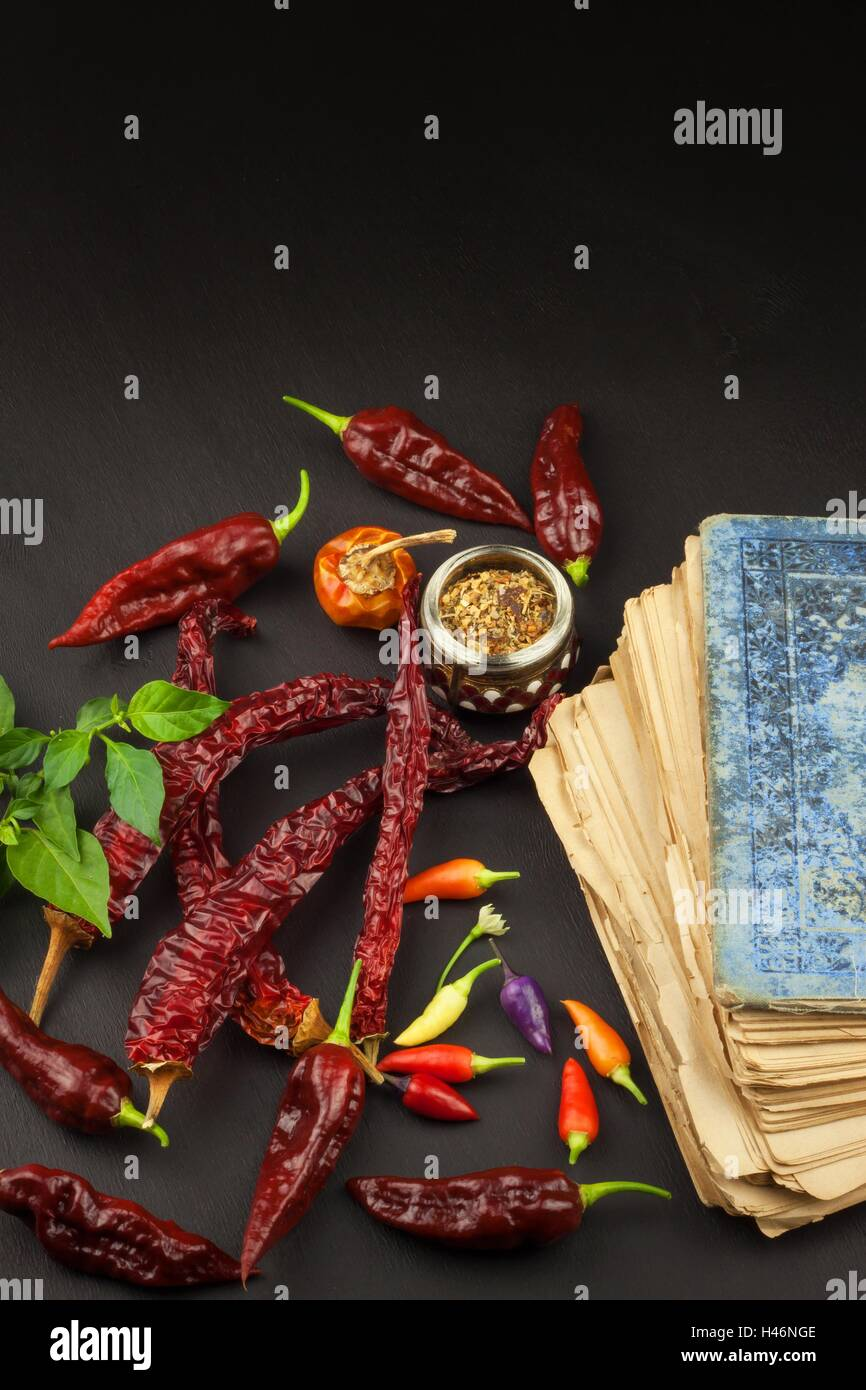 Cookbook and chillies recipe for spicy food mexican cuisine food cookbook and chillies recipe for spicy food mexican cuisine food preparation according to the old recipe book forumfinder Images