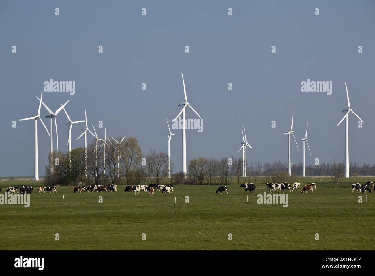 Cuxhaven Wind Energy Stock Photos & Cuxhaven Wind Energy