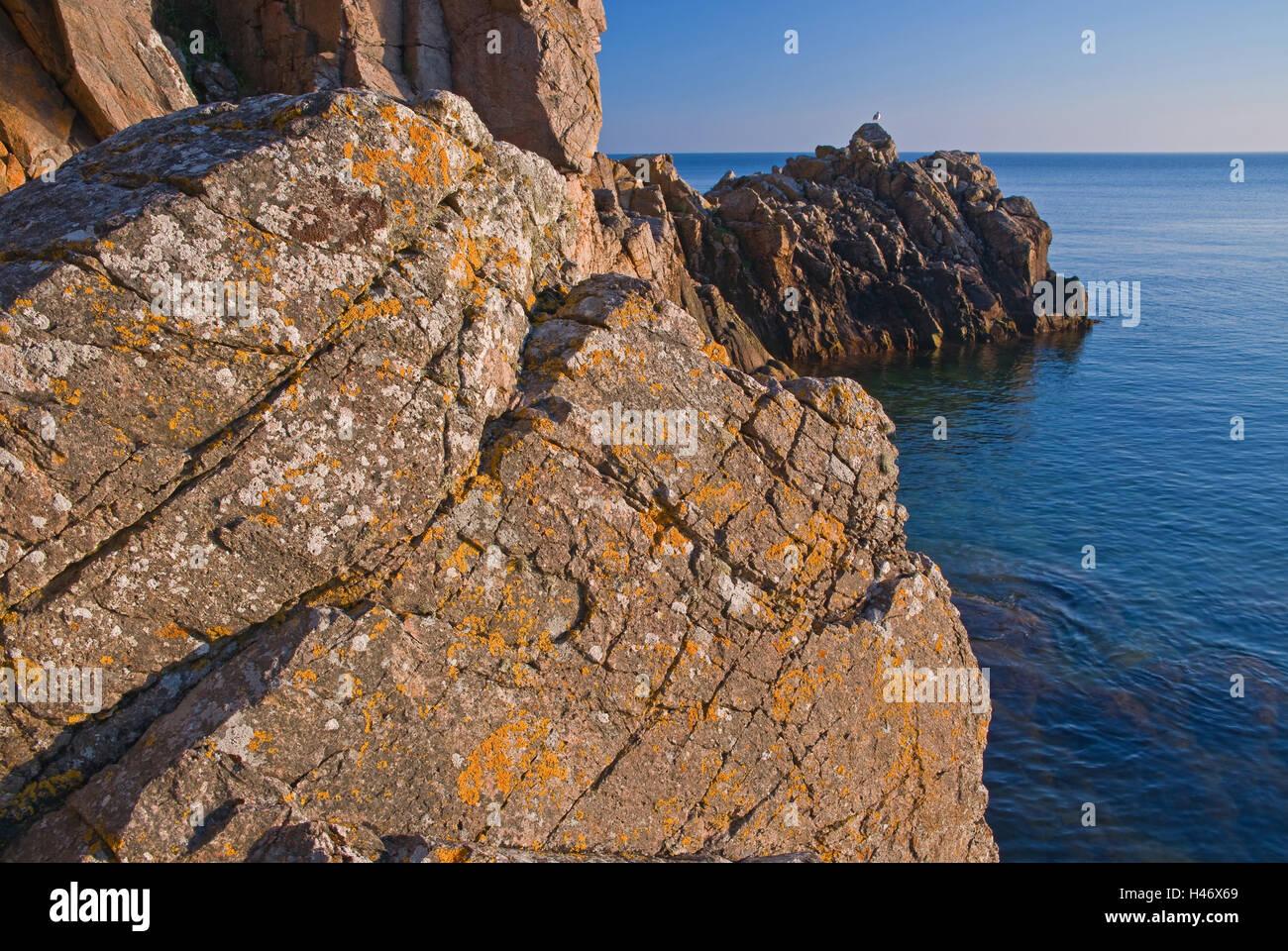 Denmark, bile coast island spring cross-beam, - Stock Image