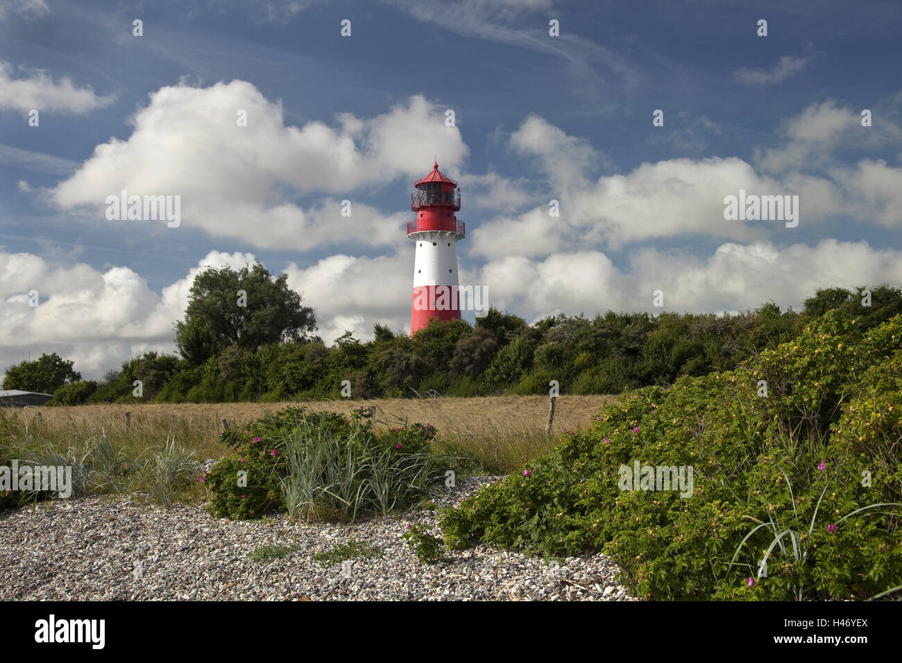 Germany, Schleswig - Holstein, region Angeln, lighthouse Falshöft, Stock Photo