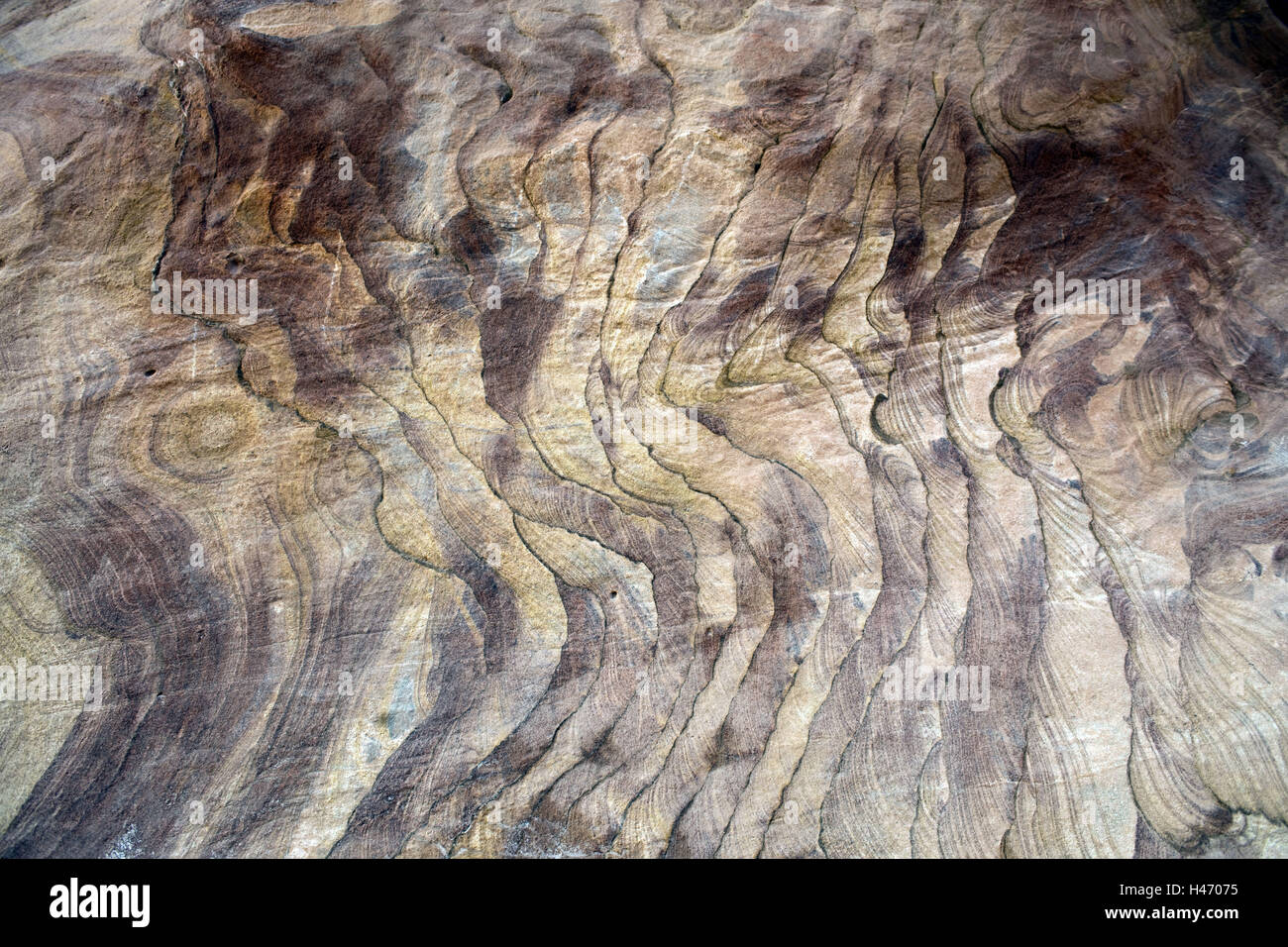 Egypt, Sinai, Nuweiba on the east coast, Coloured canyon, - Stock Image