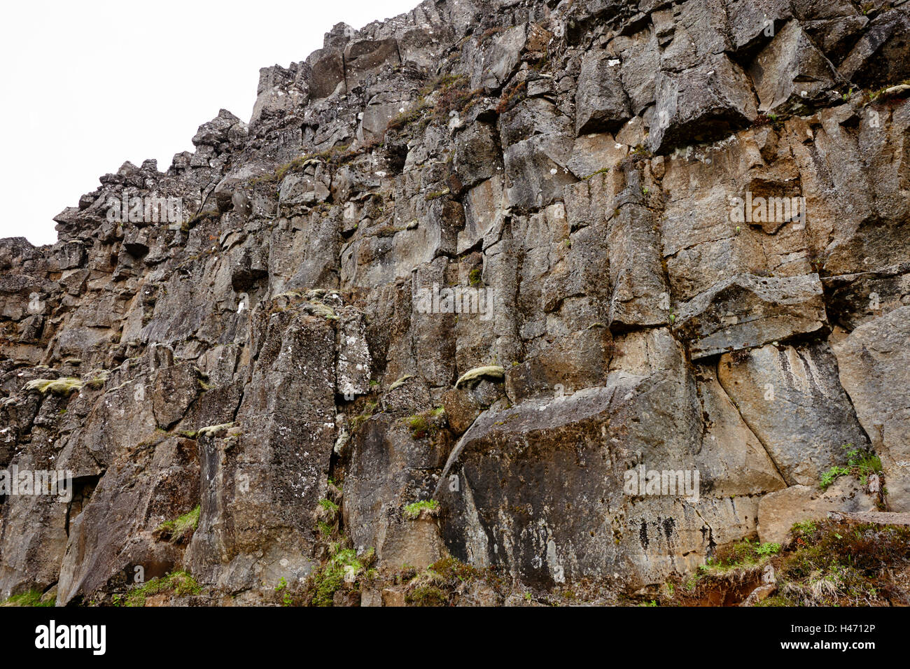 lava rock wall in fissures in the continental plates at thingvellir national park Iceland - Stock Image