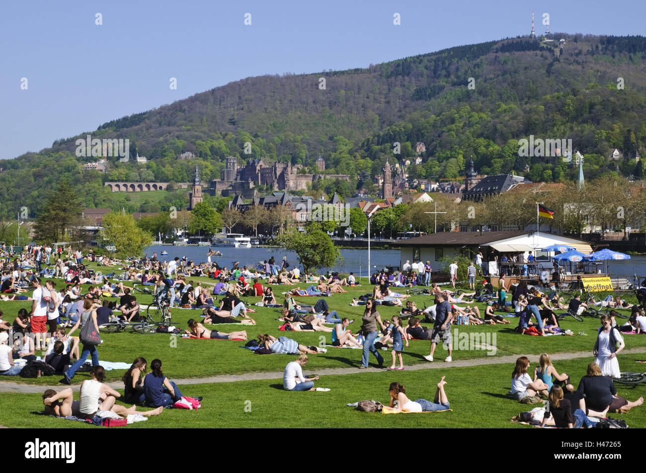 The Neckar, meadows with people, towpath, old town, Heidelberg, Baden-Württemberg, Germany, - Stock Image
