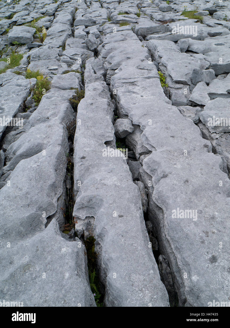 Limestone pavement in the Burren, County Clare - Stock Image