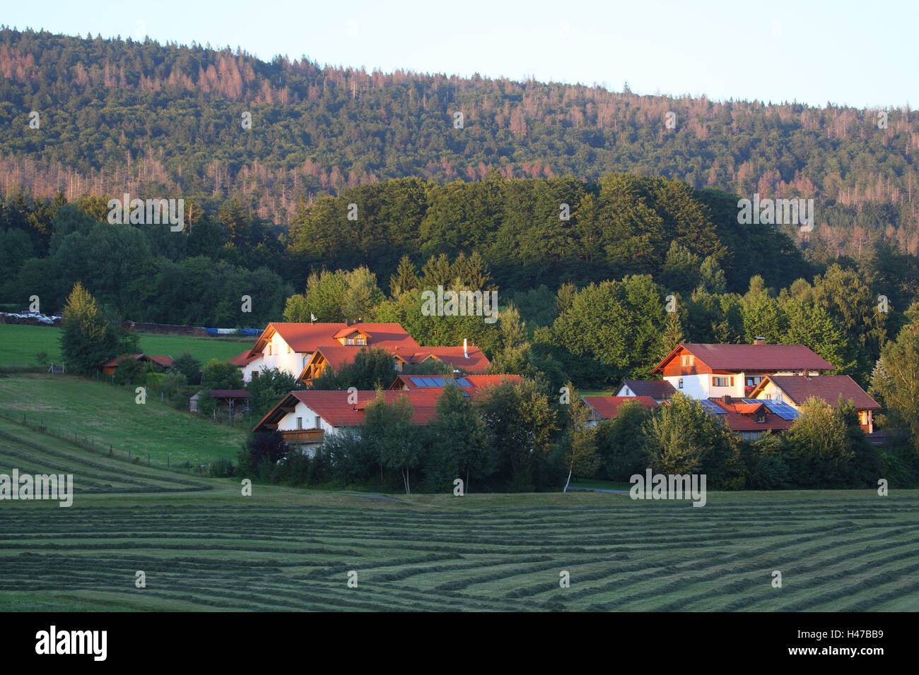 Village, Idyll, Altschönau, the Bavarian Forest, Germany, - Stock Image