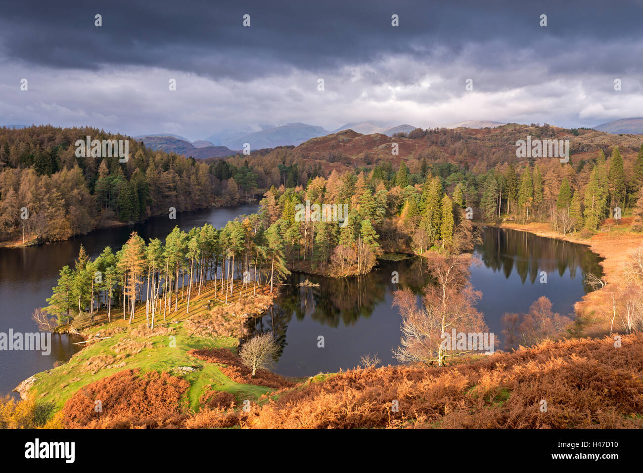 Picturesque Tarn Hows in the Lake District, Cumbria, England. Autumn (November) 2014. - Stock Image