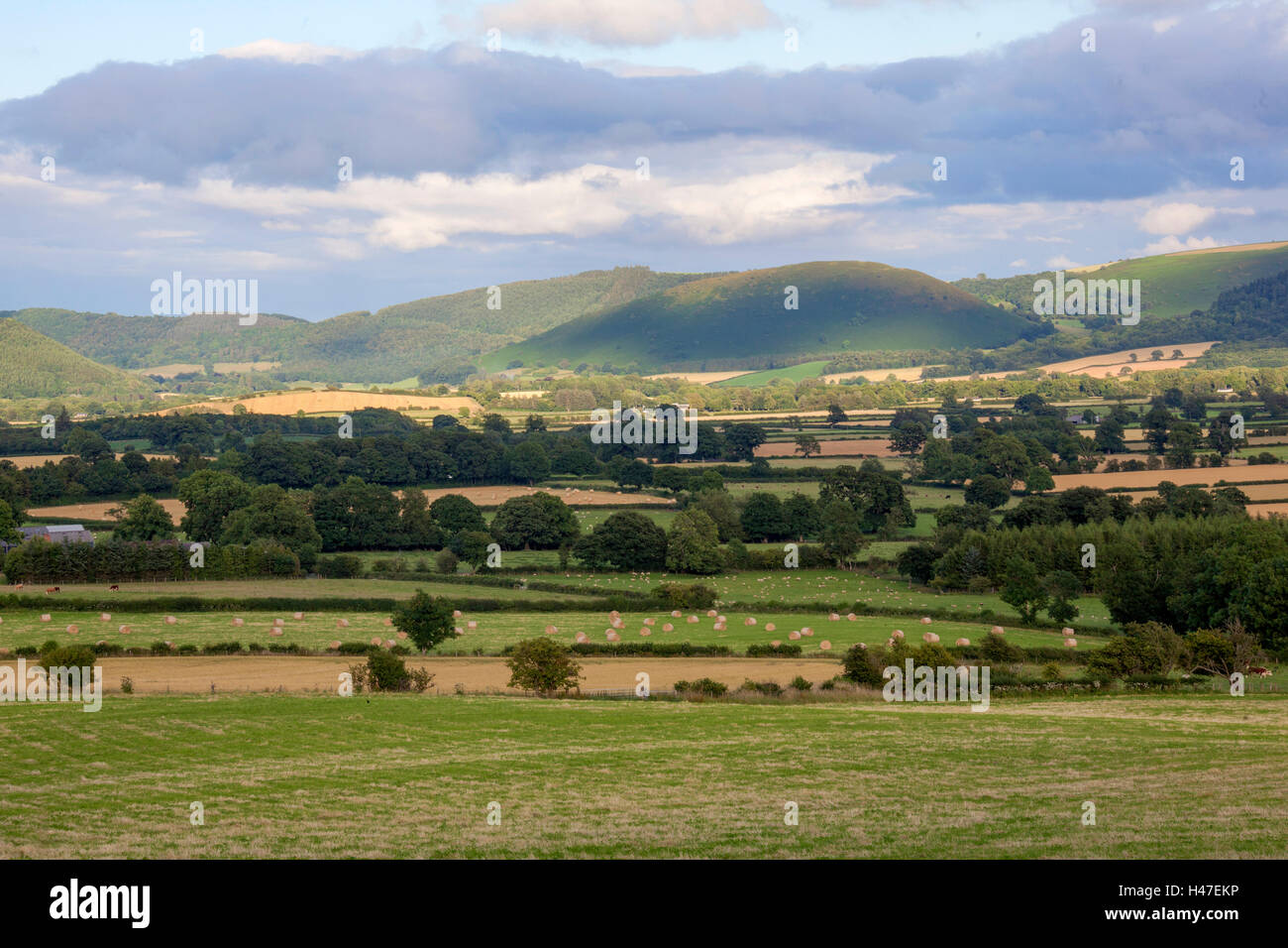 Welsh countryside - Stock Image