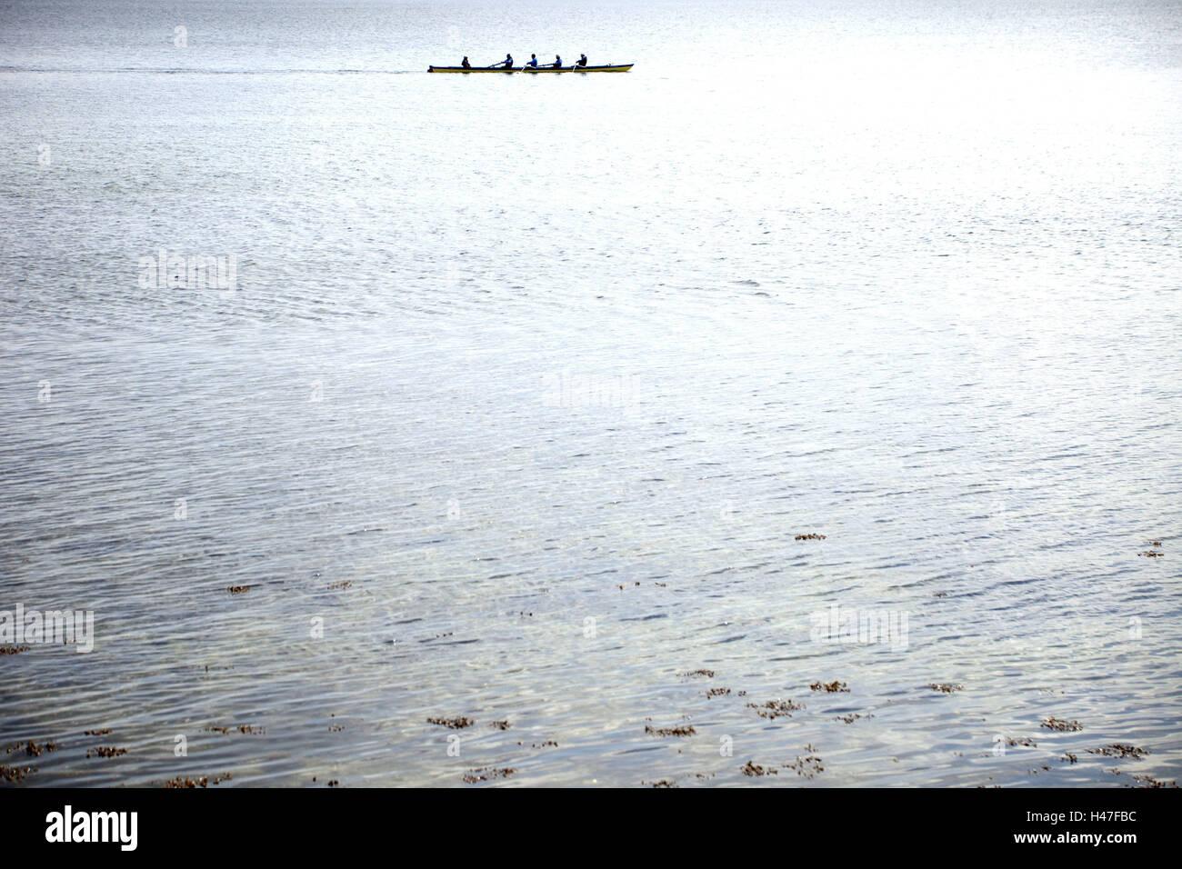 The Baltic Sea, oar boat, outside, water sport, waters, sea, row, boat, Förde, Germany, Europe, Schleswig  - Stock Image