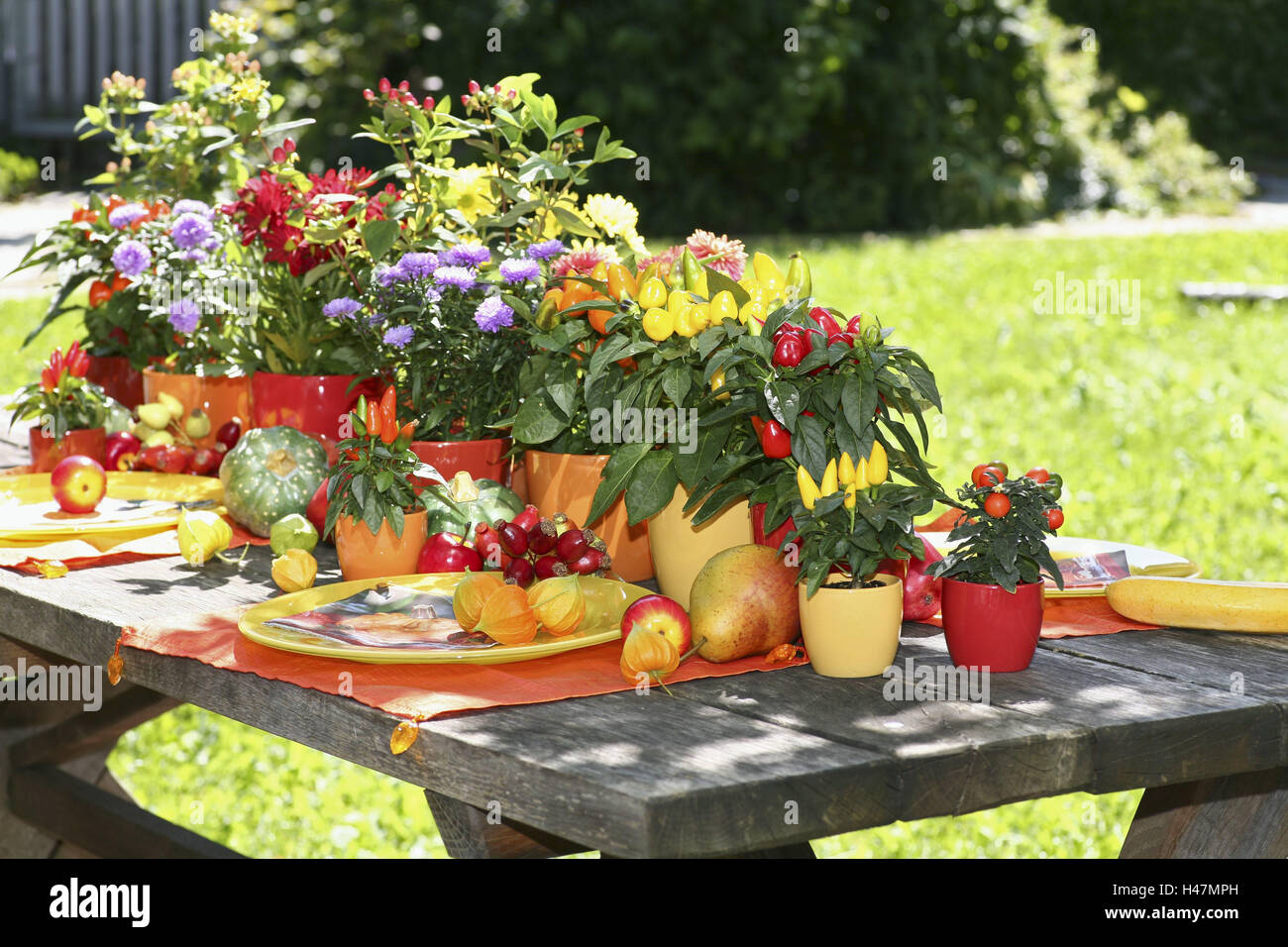 Garden table, decorated, autumnally, covered, brightly, fruits, flowers, vegetables, garden, table, late summer, - Stock Image