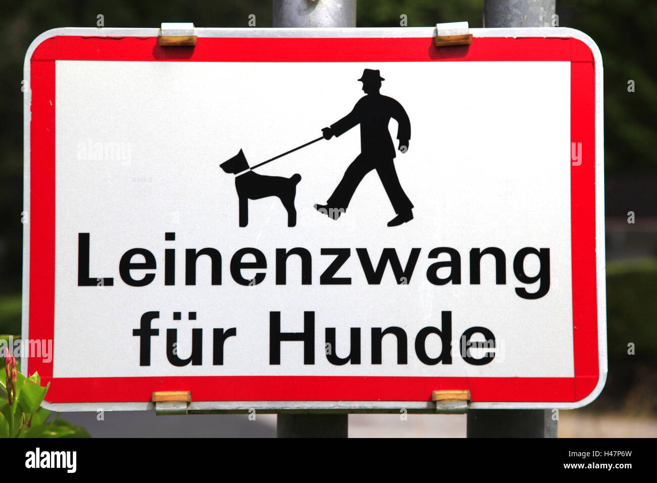 Sign, linen compulsion for dogs, ban, Commandment, dogs, rope, linen duty, leash, linen compulsion, anleinen, instruction, - Stock Image