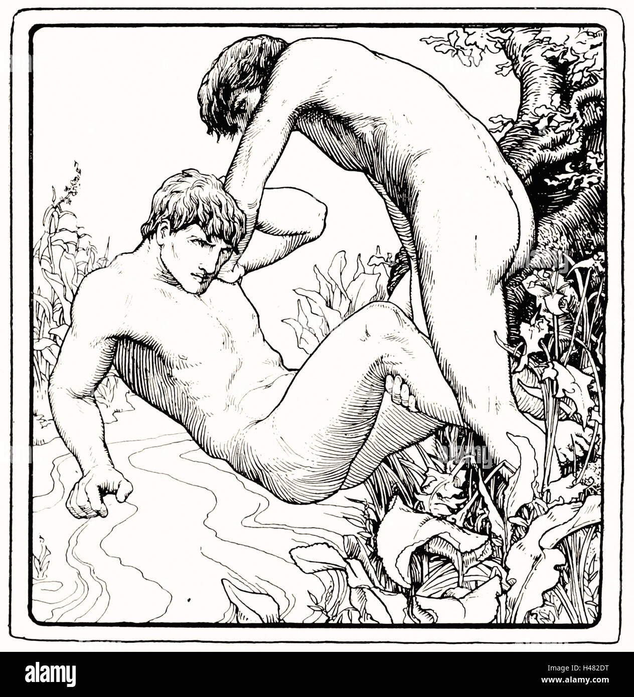 Page 215 illustration in More Celtic Fairy Tales - Stock Image