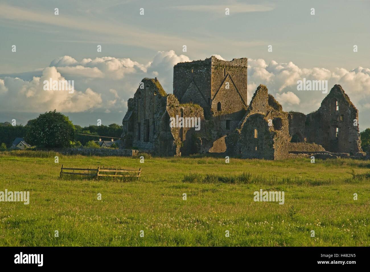 Ireland, Hore Abbey, cloister ruin, - Stock Image